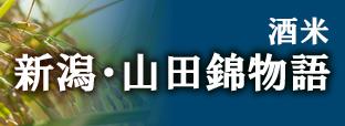 新潟山田錦物語