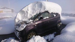 寒波に凍える!!