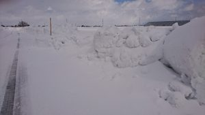 除雪の芸術???