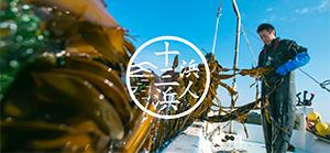 漁業生産組合 浜人(はまんと)