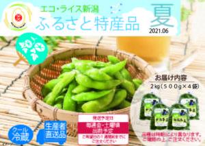 【2021年/夏パンフレット】ふるさと特産品 新潟枝豆